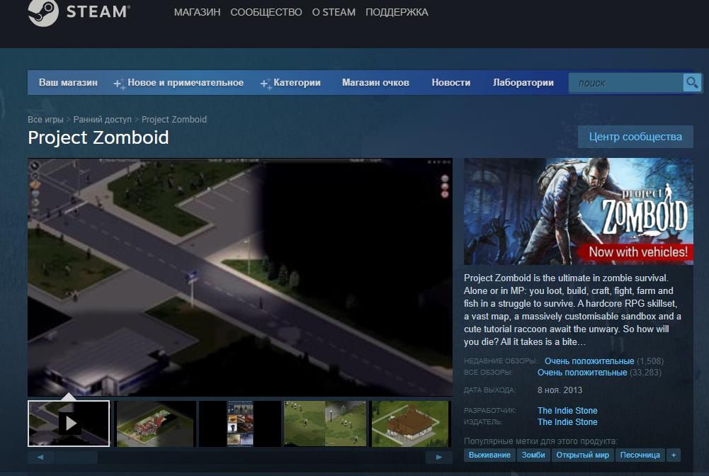 project zomboid вылетает при начале игры